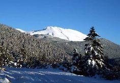 Parnassos Mount - Central Greece