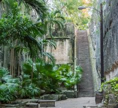 Fun things to do in Nassau Bahamas with kids - Queen's Staircase