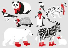 Karppi Design ::: Wool ::: illustration