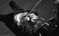 El violín perdió su voz hace unos años, y tú apareciste en la granja, pobre niño tonto.