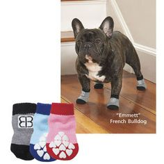 Traction Control Sox | In The Company Of Dogs