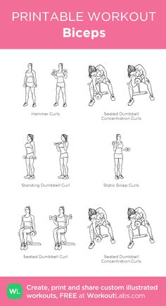 46 best back and bicep workout images  exercise workouts