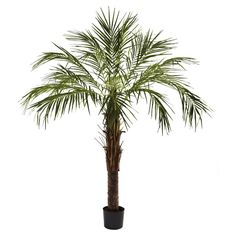 Nearly Natural 6 ft. Robellini Silk Palm Tree -- You can get additional details at the image link.