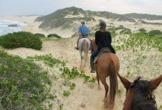 Kenton on Sea South African Holidays, Sea, Adventure, Holiday Ideas, Places, December, Southern, Haus, Ocean