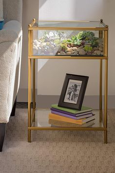 Terrarium Display End Table with Reinforced Glass in Gold Iron – Great – Wall's Furniture & Decor Bedroom Furniture Sets, Ikea Furniture, Rustic Furniture, Modern Furniture, Antique Furniture, Furniture Ideas, Furniture Stores, Bathroom Furniture, Kitchen Furniture