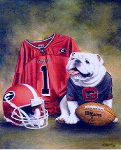 University of Georgia UGA Mascot Football Gear Art Georgia Bulldogs Cake, Georgia Bulldog Mascot, Georgia Bulldogs Football, Georgia Girls, Football Gear, College Football, University Of Georgia, Down South, Bull Dog