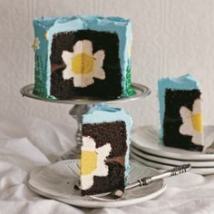 Daisy Cake - Delish - Photo by Susan Powers Photography (http://www.delish.com/food/recalls-reviews/daisy-cake).