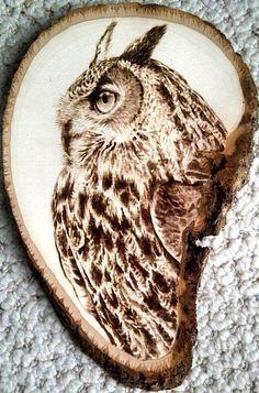Pyrography Owl, wood burning