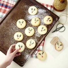 Bright red noses of reindeers! Mr.Reindeer with a lovely red nose #CookieBaking 루돌프 사슴코는 매우 반짝이는 코! 빠알간 코가 넘나 사랑스러운 노릇노릇 사슴군 #쿠키만들기 #스킨푸드 #SKINFOOD #onedayonly #myfavorite #instagood