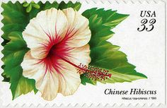 33c Chinese Hibiscus booklet single