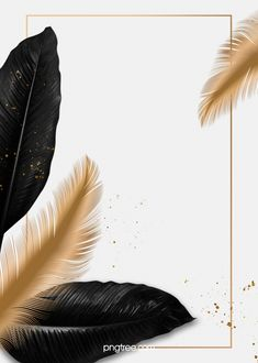 Luxury Black Palm Golden Feather Border Wedding Background – The Best Ideas Gold Wallpaper Background, Framed Wallpaper, Background Patterns, Wallpaper Backgrounds, Logo Background, Feather Background, Wedding Background Images, Wedding Invitation Background, Fond Design
