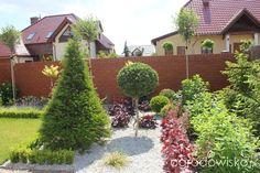 Przedwiośnie ogrodu..:) - strona 51 - Forum ogrodnicze - Ogrodowisko