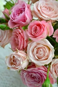 So many hues of pink are part of this Rose bouquet, All Flowers, Pretty Flowers, Fresh Flowers, Colorful Roses, Flowers Nature, Flowers Garden, Romantic Roses, Beautiful Roses, Rosa Rose