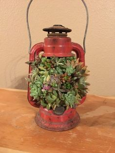 Excited to share this item from my shop: Succulent lantern Succulent Planter Diy, Succulent Cuttings, Succulent Gardening, Diy Planters, Flower Planters, Old Lanterns, Vintage Lanterns, Succulents In Containers, Planting Succulents