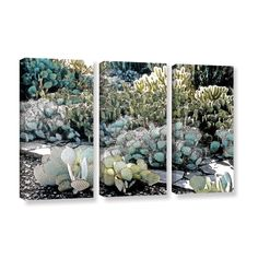 Botanical Garden by Linda Parker 3 Piece Photographic Print on Gallery Wrapped Canvas Set