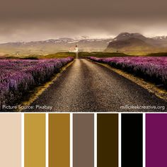 Color Palettes for Design Inspiration Earth Colour Palette, Purple Color Palettes, Colour Pallette, Colour Schemes, Color Combos, Plum Color, Earth Color, Color Plan, Pure Oils