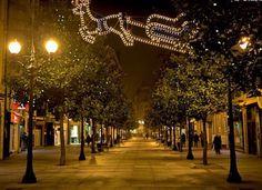 (38) Corrida street. La calle emblemática de Gijón. La principal vía del centro comercial de la ciudad más poblada de Asturias.