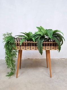 View this item and discover similar Garden Tables for sale at Pamono. Shop with global insured delivery at Pamono. Hanging Plants, Potted Plants, Bohemian Decor, Bohemian Style, Garden Table, Mid Century Design, Outdoor Furniture, Outdoor Decor, Studio