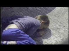 The Urban Gorilla   Child falls into gorilla pit at zoo