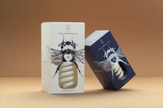 Insect-inspired packaging lights up beautiful new brand identity | Creative Bloq