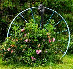 Country Garden~cl