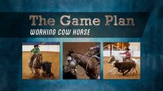 The Game Plan - Working Cow Horse (November 2014)