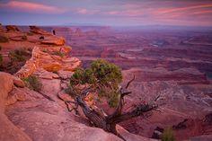 Moab, Utah: Canyonlands.  The desert is full of beauty in the right light