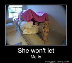 #funny #humor #laugh