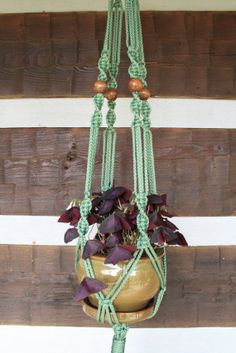 Sage Green Macrame Plant Hanger with Large Brown by HangingKnots