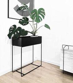 Plant Box: Beistelltisch, Raumtrenner und Pflanzenbehälter in einem! Hier entdecken und shoppen: https://sturbock.me/6FP