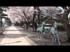 Beautiful Places In Japan, Aomori, Famous Places, Statue Of Liberty, Scenery, Youtube, Travel, Liberty Statue, Voyage