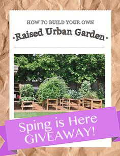 Spring Garden Plan Giveaway -  5 lucky winners! - enter to win the plans for FREE, Happy Spring!!