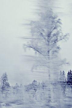 Winter 2011?