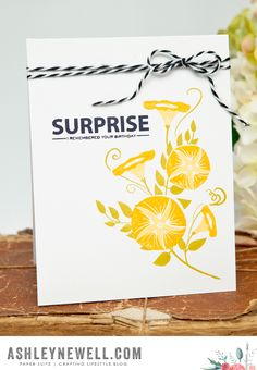 Surprise Card by Ashley Cannon Newell for Papertrey Ink (July 2015)