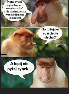 Polish Memes, Smile Everyday, Good Mood, Cool, Haha, Jokes, Facts, Humor, Funny