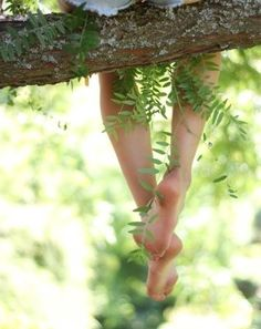 "(open rp with Millith) I sigh and sat on a branch in a  tree, making ferns grow. It was using my energy but hey, I was bored. ""Um, what're you doing in a tree?"" Someone asks..."