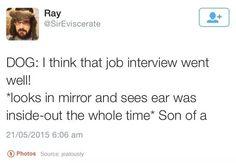Dog interview fails.  #dogfail #dog #jobinterview #barksnrecbc