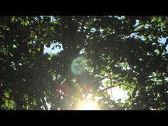 Dr Richard Arjun Kaul-Nine-MFS-Episode 30