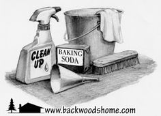 Clean up your act! By Nanette Blanchard -   Directions for homemade cleansers. Lavender laundry detergent, Peppermint spray cleaner, Lavender-scented dish liquid, and Peppermint scouring powder.