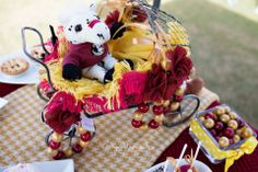 FSU inspired tailgating baby shower by Everyday Moments Photography and Two Sweets Bake Shop www.lovetwosweets.com www.everydaymomentsphotography.com