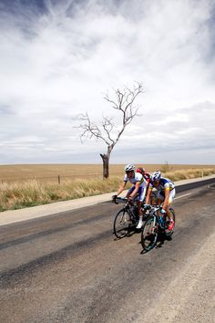 A breakaway group of 4 riders passes a lone tree.