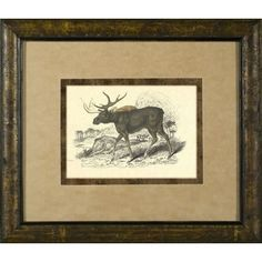Phoenix Galleries Moose Framed Print - HP715