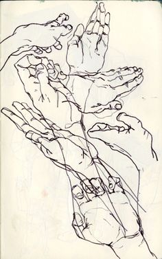 This drawing shows blind contour lines by  Egon Schiele.