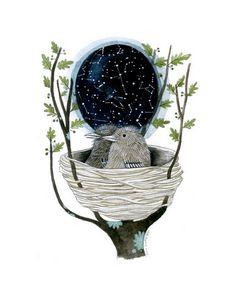 Star Map by Diana Sudyka