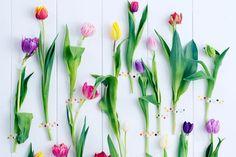 Zelfmakers-met-tulpen-Woonguide