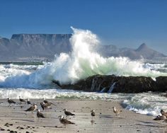 Bloubergstrand Cape Town South Africa, Table Mountain, Landscape Photos, Great Photos, Wonders Of The World, Scenery, Waves, City, Beach