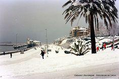 Nevada en Algorta, 1985. Arriluze (Cedida por Fede Cassi) (ref. 05042)