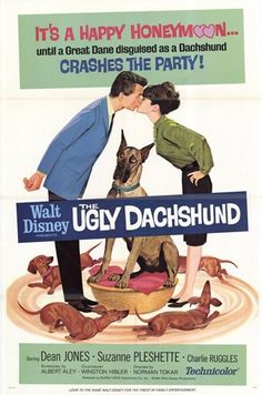 """The Disney movie - """"The Ugly Dachshund"""" starting Dean Jones and Suzanne Pleshette Walt Disney Movies, Disney Movie Posters, Film Disney, Disney Dogs, Film Posters, Disney Stuff, Old Movies, Vintage Movies, Great Movies"""