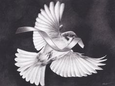 The original is 9x12 inch charcoal drawing on recycled vellum Bristol paper by Brittni DeWeese. It is a representation of the same imagery done in traditional tattoos of a sparrow with banner/scroll, but done in realism. It was submitted to Out of Step Books bird project (oosbooks.com).