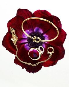 Twitter / Ferragamo: The pollen of a wildflower bears fruit to these golden icons. #InLoveWithFerragamo #ValentinesDay